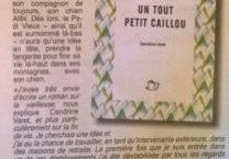 """Le Petit Vendômois de juin 2018, """"Un tout petit caillou"""" de Cendrine Varet"""